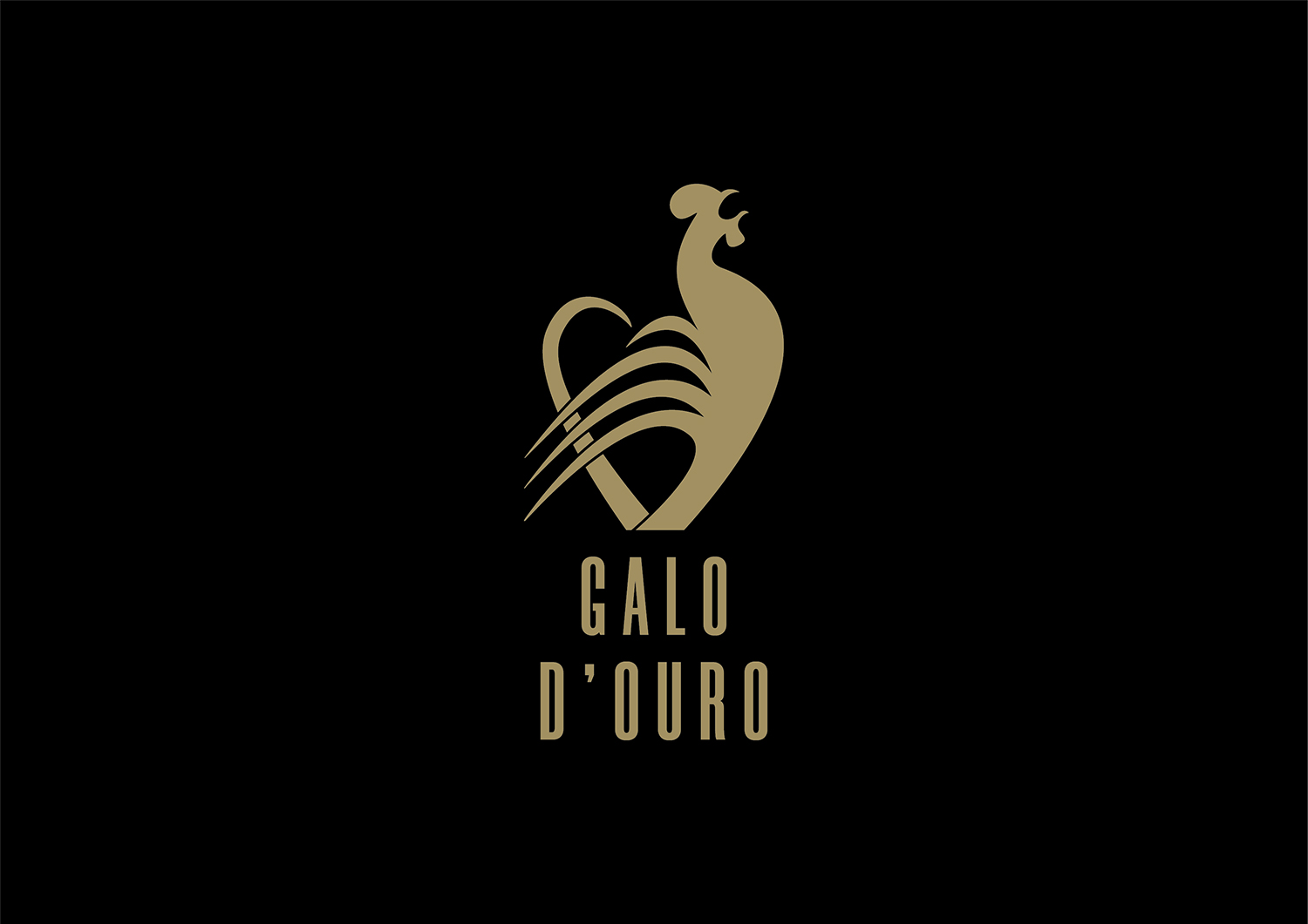 galo-d-ouro-07